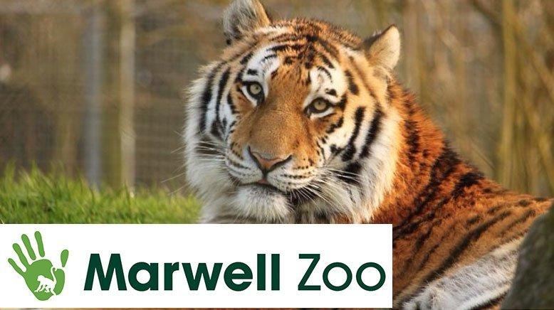 Marwell Zoo 778X436